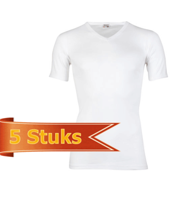 Heren T-shirt korte mouw V-hals Beeren Wit (5 stuks)
