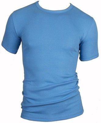 Heren beeren  T-shirt korte mouw blue